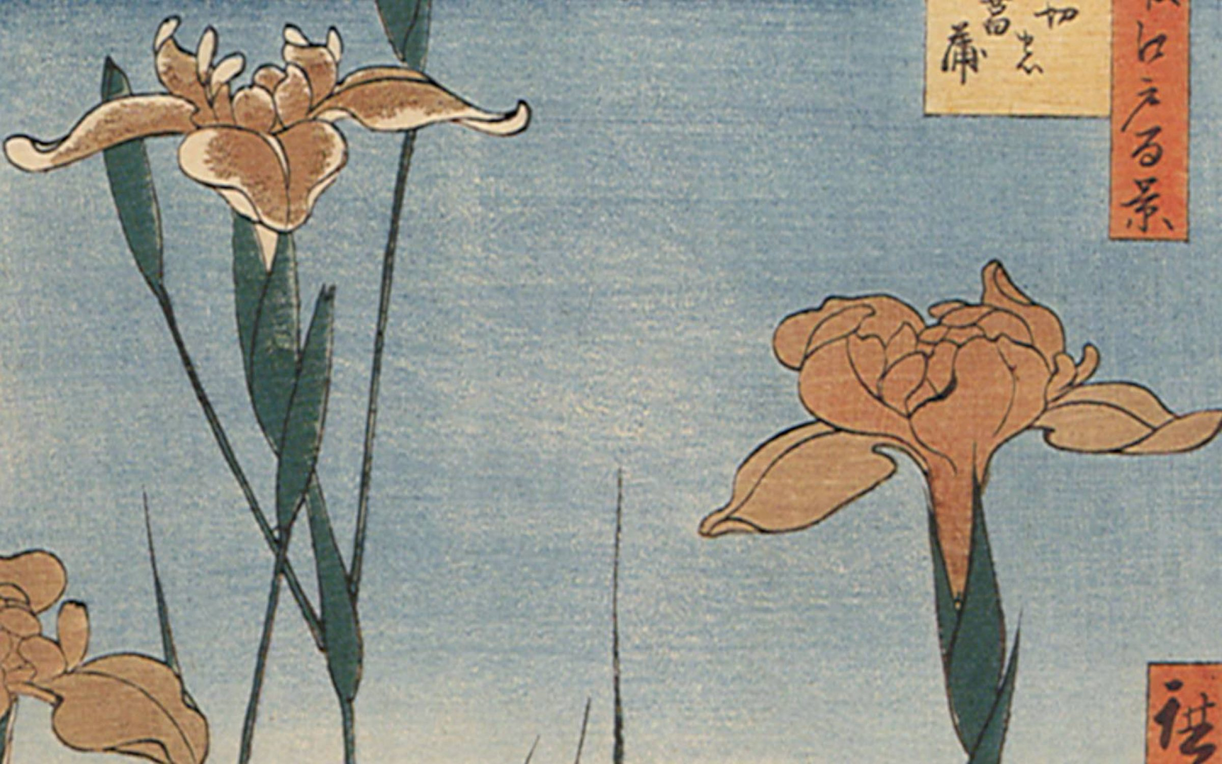 The Iris Gardens by Hiroshige, 1857 . Credit: Picturenow/Universal Images Group via Getty Images